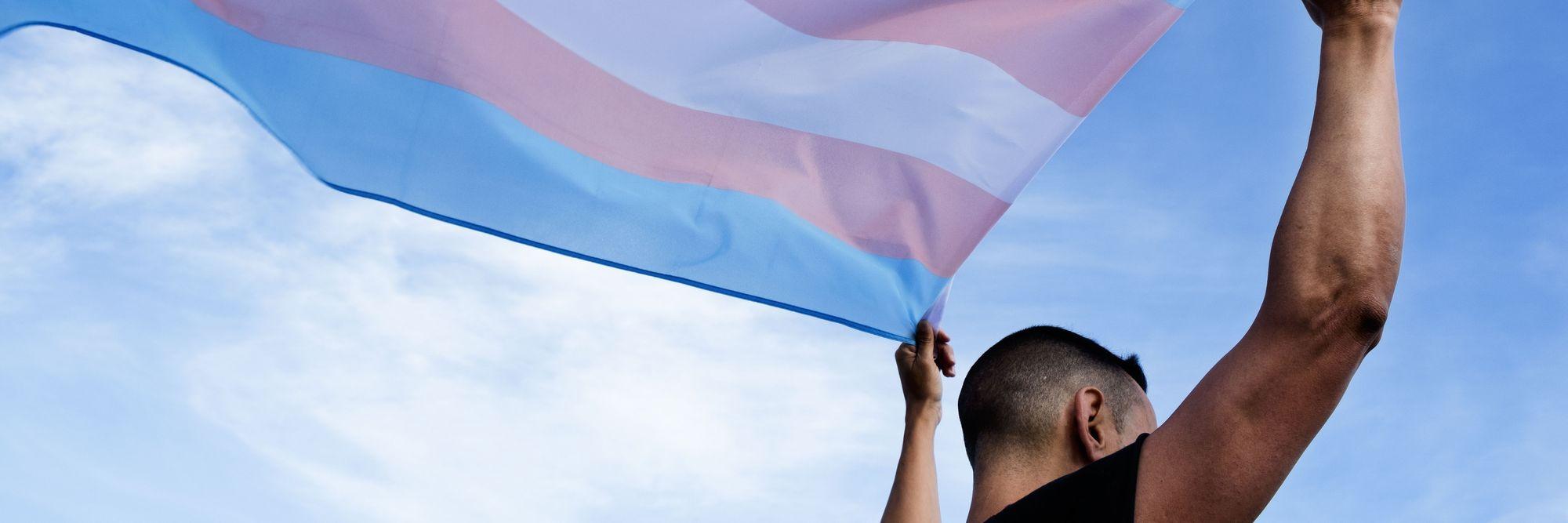 A closeup of the Transgender Pride flag