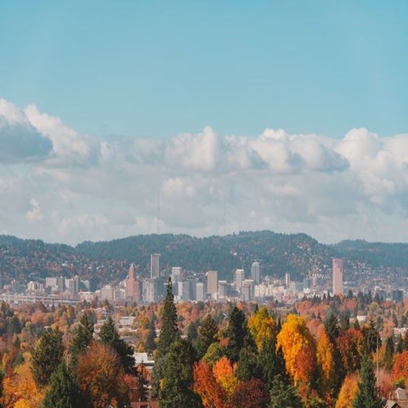 Affordable Low Cost Therapy Services in Portland