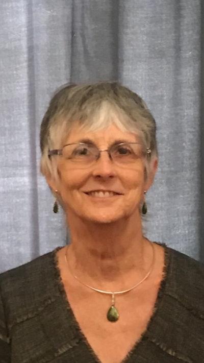 Ann E Goldman