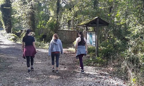 Women's Therapeutic Hiking Group